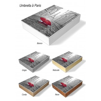PHOTO AND ALBUM CASE BOX - UMBRELLA IN PARIS